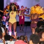 2016 Bermuda Heroes Weekend Launch, November 20 2015-18