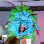 2016 Bermuda Heroes Weekend Launch, November 20 2015-4