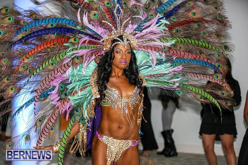 2016-Bermuda-Heroes-Weekend-Launch-November-20-2015-7