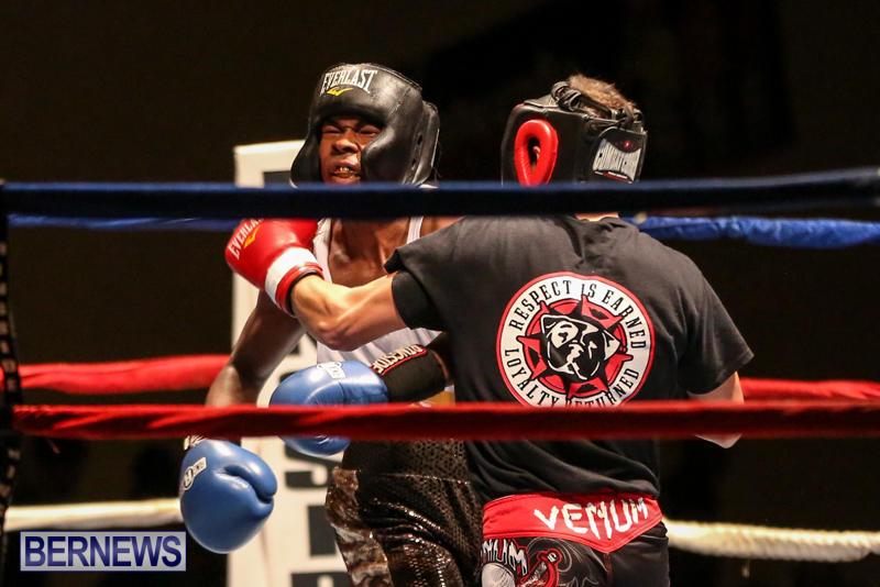 Andre Lambe vs Shane Mello Boxing Match Bermuda, November 7 2015-1