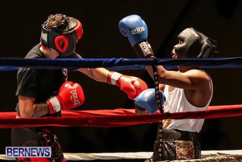 Andre Lambe vs Shane Mello Boxing Match Bermuda, November 7 2015-12