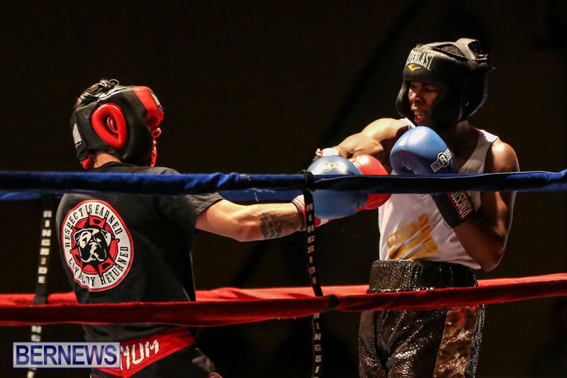 Andre Lambe vs Shane Mello Boxing Match Bermuda, November 7 2015-14
