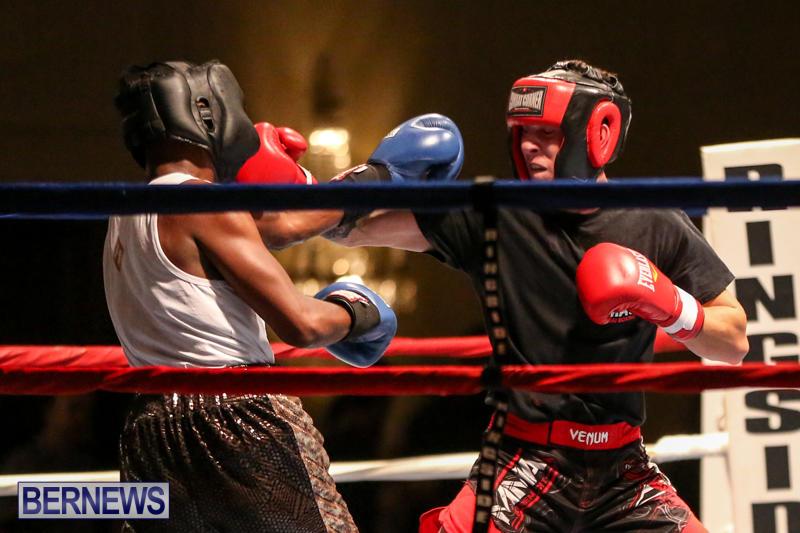Andre Lambe vs Shane Mello Boxing Match Bermuda, November 7 2015-5