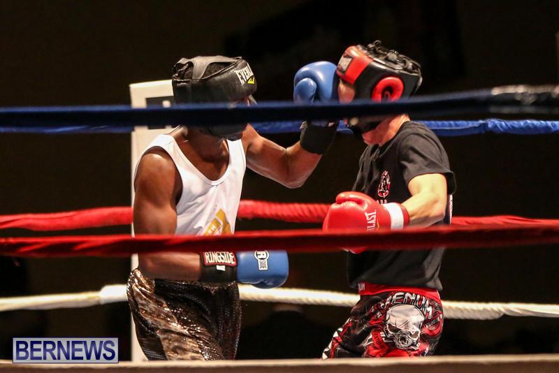 Andre Lambe vs Shane Mello Boxing Match Bermuda, November 7 2015-8