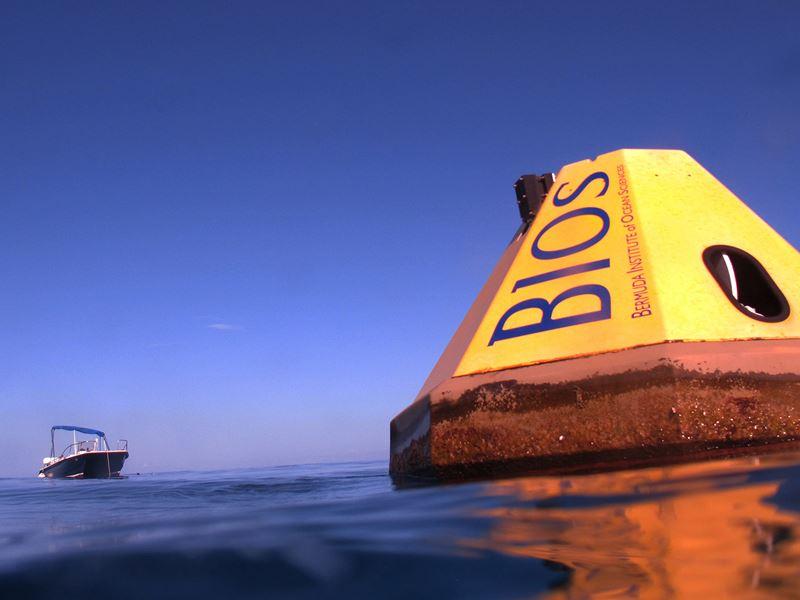 BIOS-BEACON (1)