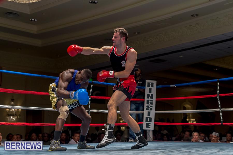 Bermuda-Boxing-JM-Nov-2015-101