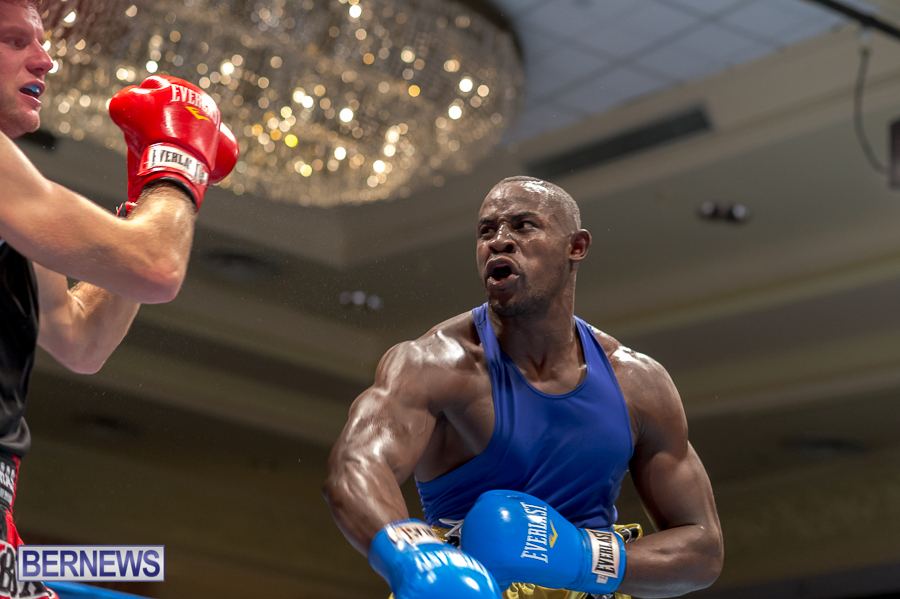 Bermuda-Boxing-JM-Nov-2015-118