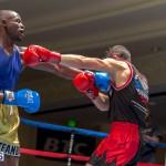 Bermuda Boxing JM Nov 2015 (123)
