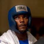 Bermuda Boxing JM Nov 2015 (13)