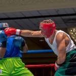 Bermuda Boxing JM Nov 2015 (14)