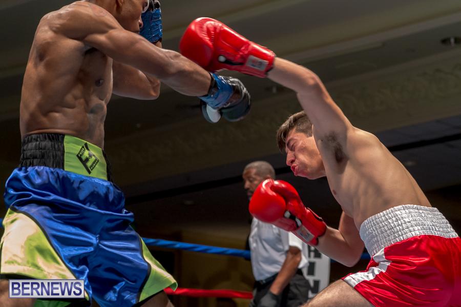 Bermuda-Boxing-JM-Nov-2015-141