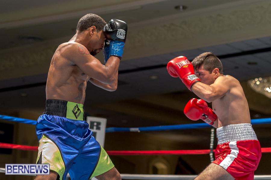Bermuda-Boxing-JM-Nov-2015-142