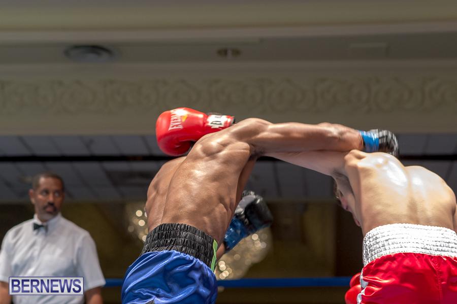 Bermuda-Boxing-JM-Nov-2015-146