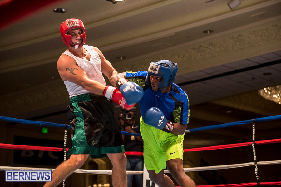 Bermuda-Boxing-JM-Nov-2015-154