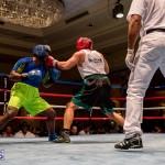 Bermuda Boxing JM Nov 2015 (155)
