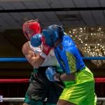 Bermuda Boxing JM Nov 2015 (16)