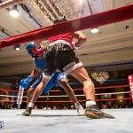Bermuda Boxing JM Nov 2015 (160)