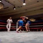 Bermuda Boxing JM Nov 2015 (162)