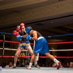 Bermuda Boxing JM Nov 2015 (163)