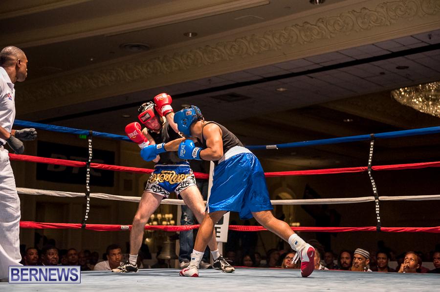 Bermuda-Boxing-JM-Nov-2015-163