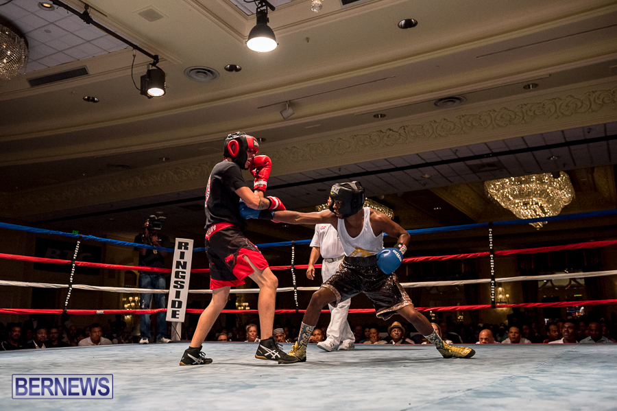 Bermuda-Boxing-JM-Nov-2015-166