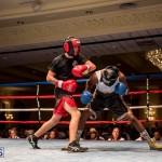 Bermuda Boxing JM Nov 2015 (169)