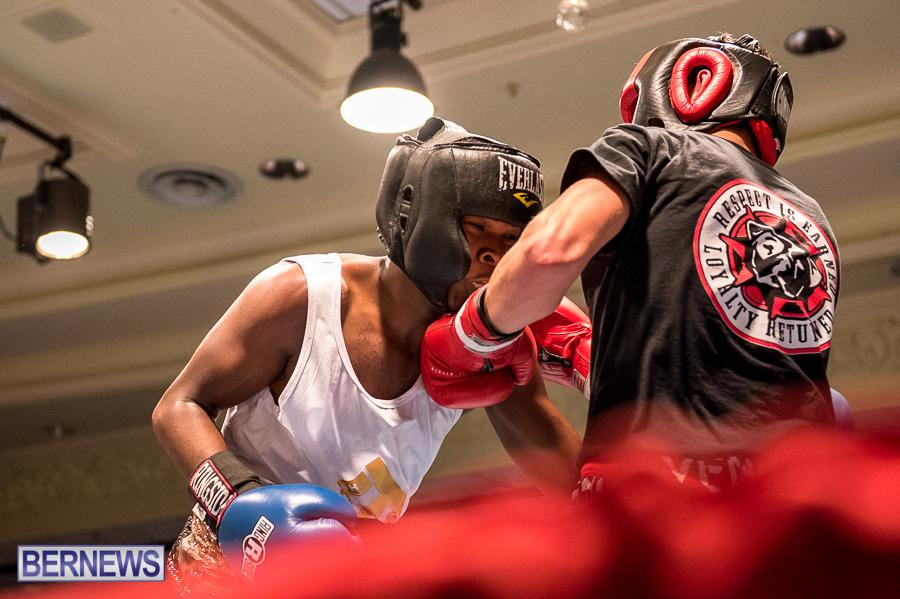Bermuda-Boxing-JM-Nov-2015-170