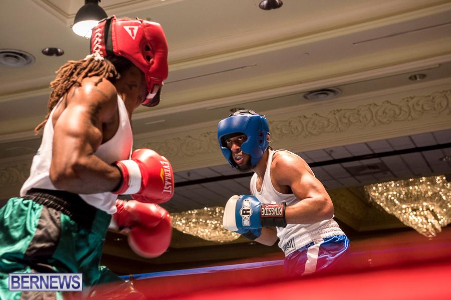 Bermuda-Boxing-JM-Nov-2015-176