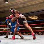 Bermuda Boxing JM Nov 2015 (179)