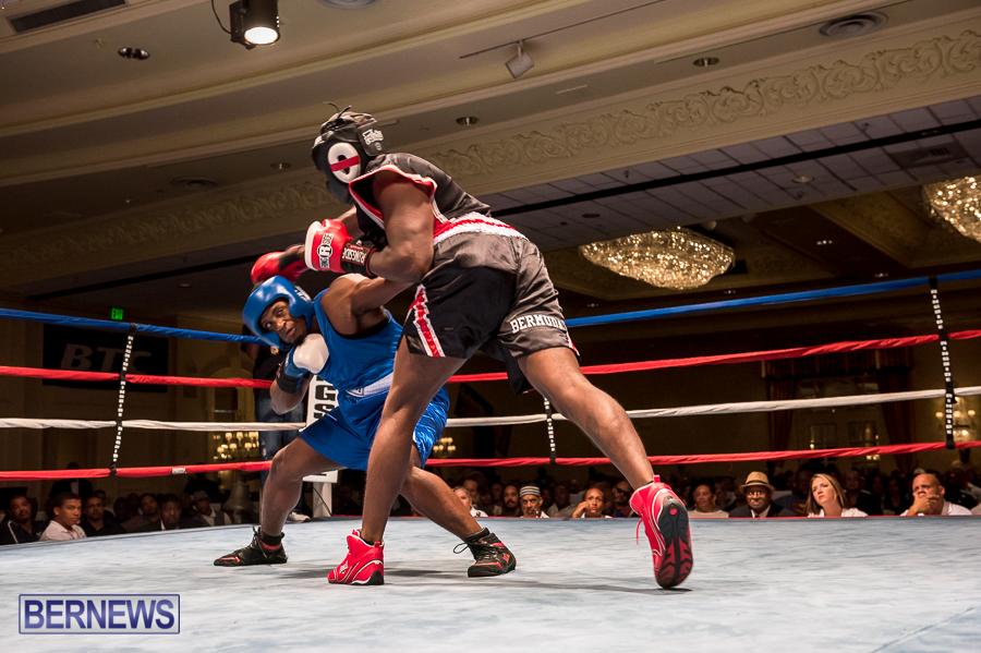Bermuda-Boxing-JM-Nov-2015-179