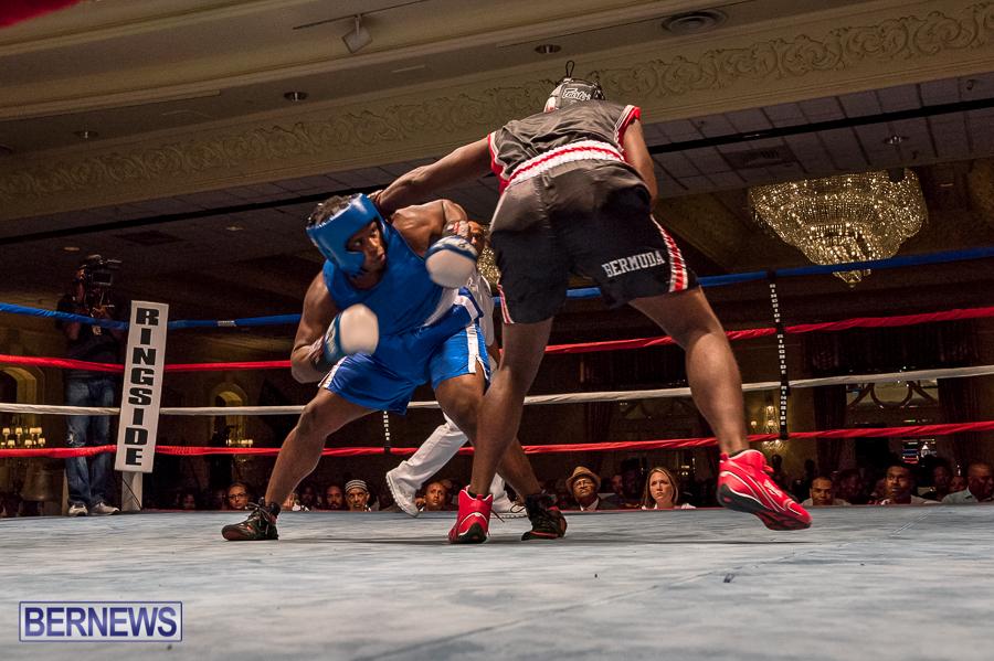 Bermuda-Boxing-JM-Nov-2015-180