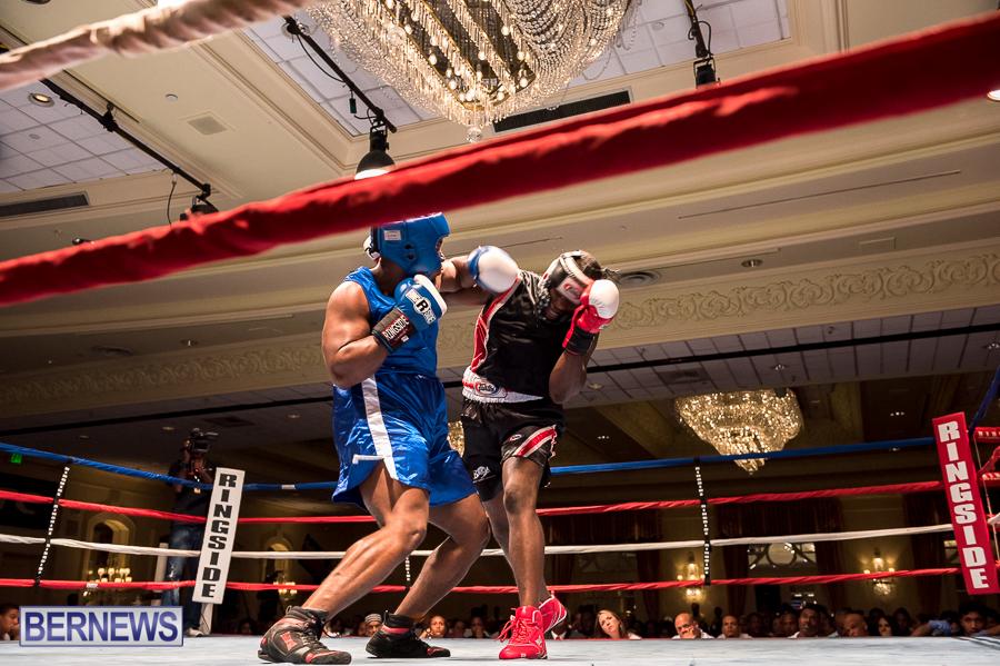 Bermuda-Boxing-JM-Nov-2015-182