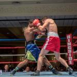 Bermuda Boxing JM Nov 2015 (190)