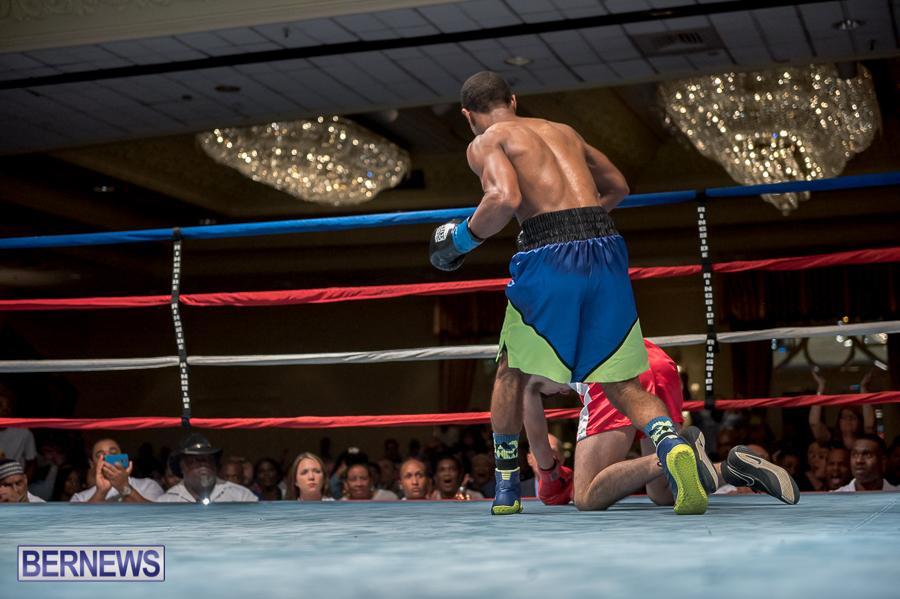 Bermuda-Boxing-JM-Nov-2015-195