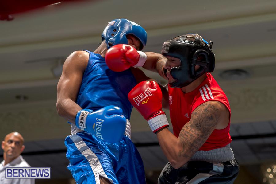 Bermuda-Boxing-JM-Nov-2015-21