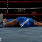 Bermuda Boxing JM Nov 2015 (25)