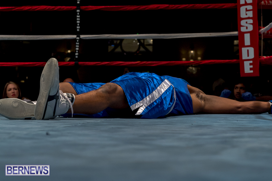 Bermuda-Boxing-JM-Nov-2015-25
