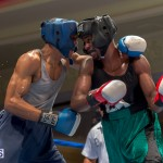 Bermuda Boxing JM Nov 2015 (27)