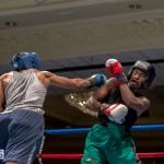 Bermuda Boxing JM Nov 2015 (28)