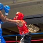 Bermuda Boxing JM Nov 2015 (3)