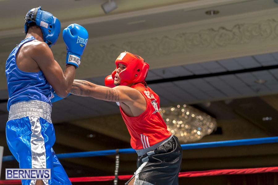 Bermuda-Boxing-JM-Nov-2015-3