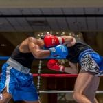 Bermuda Boxing JM Nov 2015 (31)