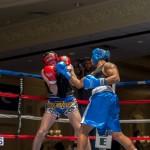 Bermuda Boxing JM Nov 2015 (33)
