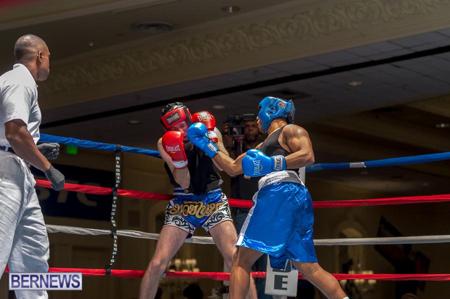 Bermuda-Boxing-JM-Nov-2015-33