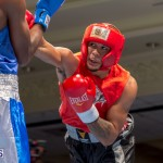 Bermuda Boxing JM Nov 2015 (4)