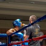 Bermuda Boxing JM Nov 2015 (41)