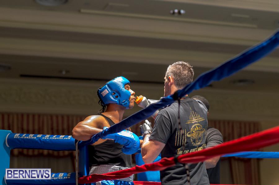 Bermuda-Boxing-JM-Nov-2015-41