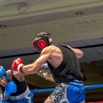 Bermuda Boxing JM Nov 2015 (42)