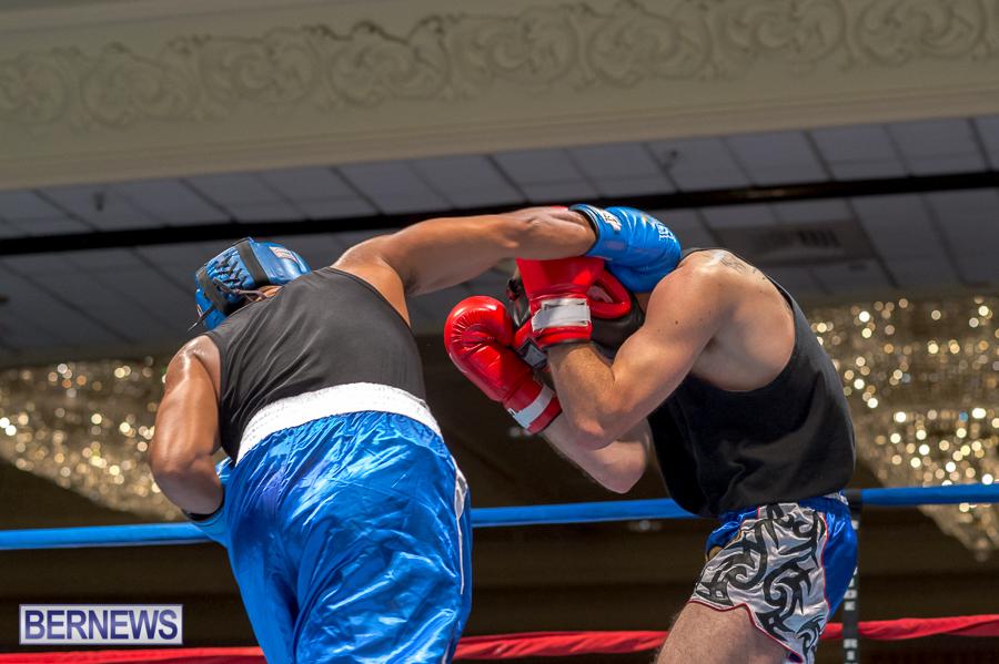 Bermuda-Boxing-JM-Nov-2015-43