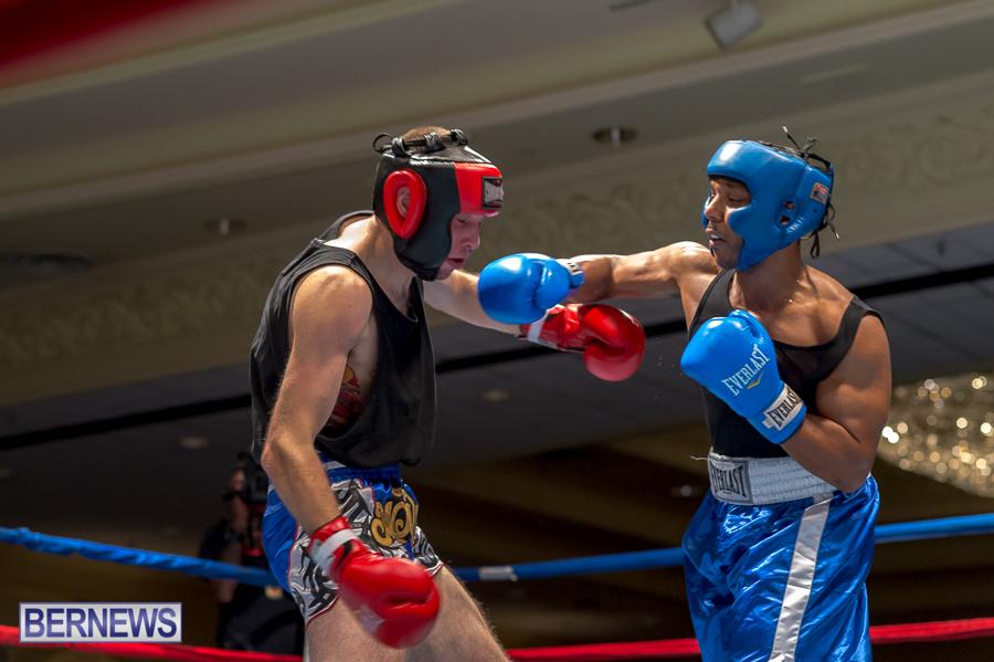 Bermuda-Boxing-JM-Nov-2015-46